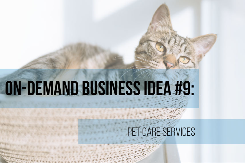 On-demand business idea #9: pet care services